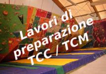 Lavori di preparazione del TCC/TCM del 10 febbraio